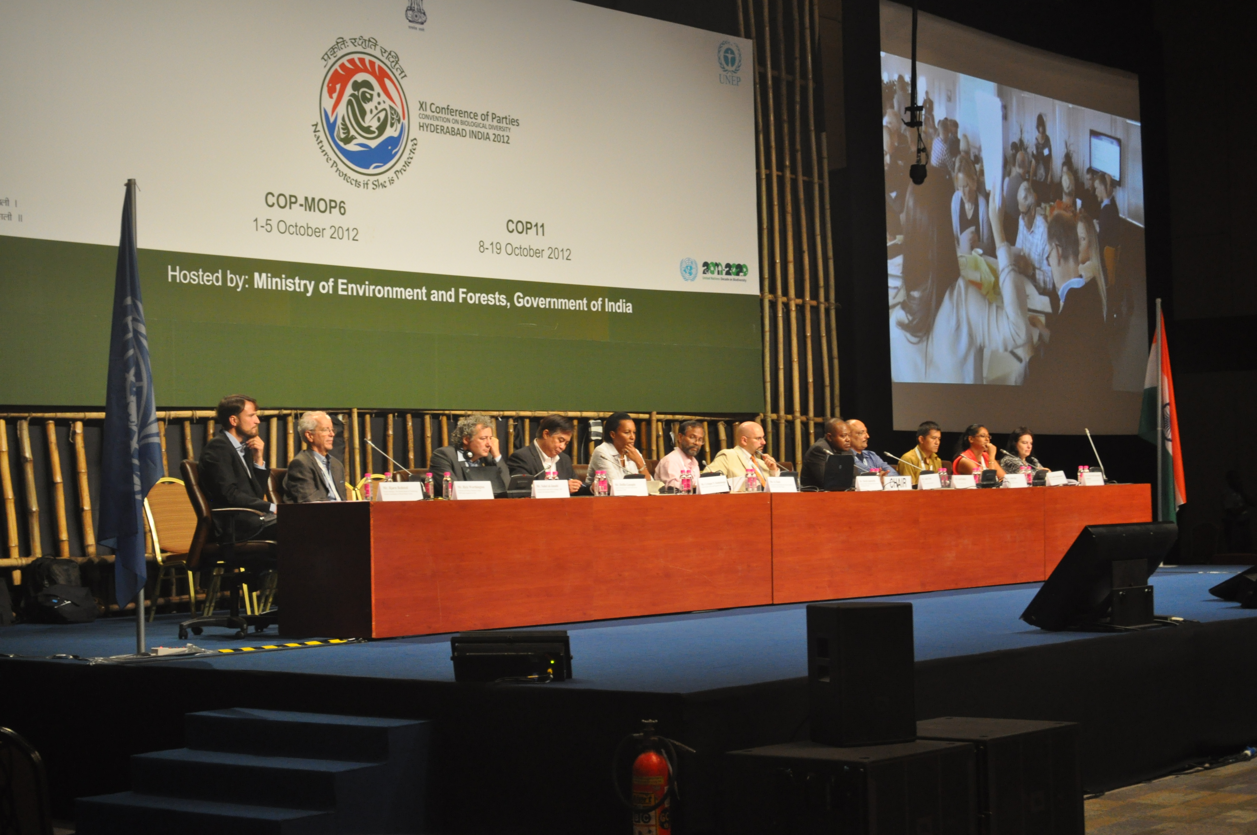 WWViews at COP11